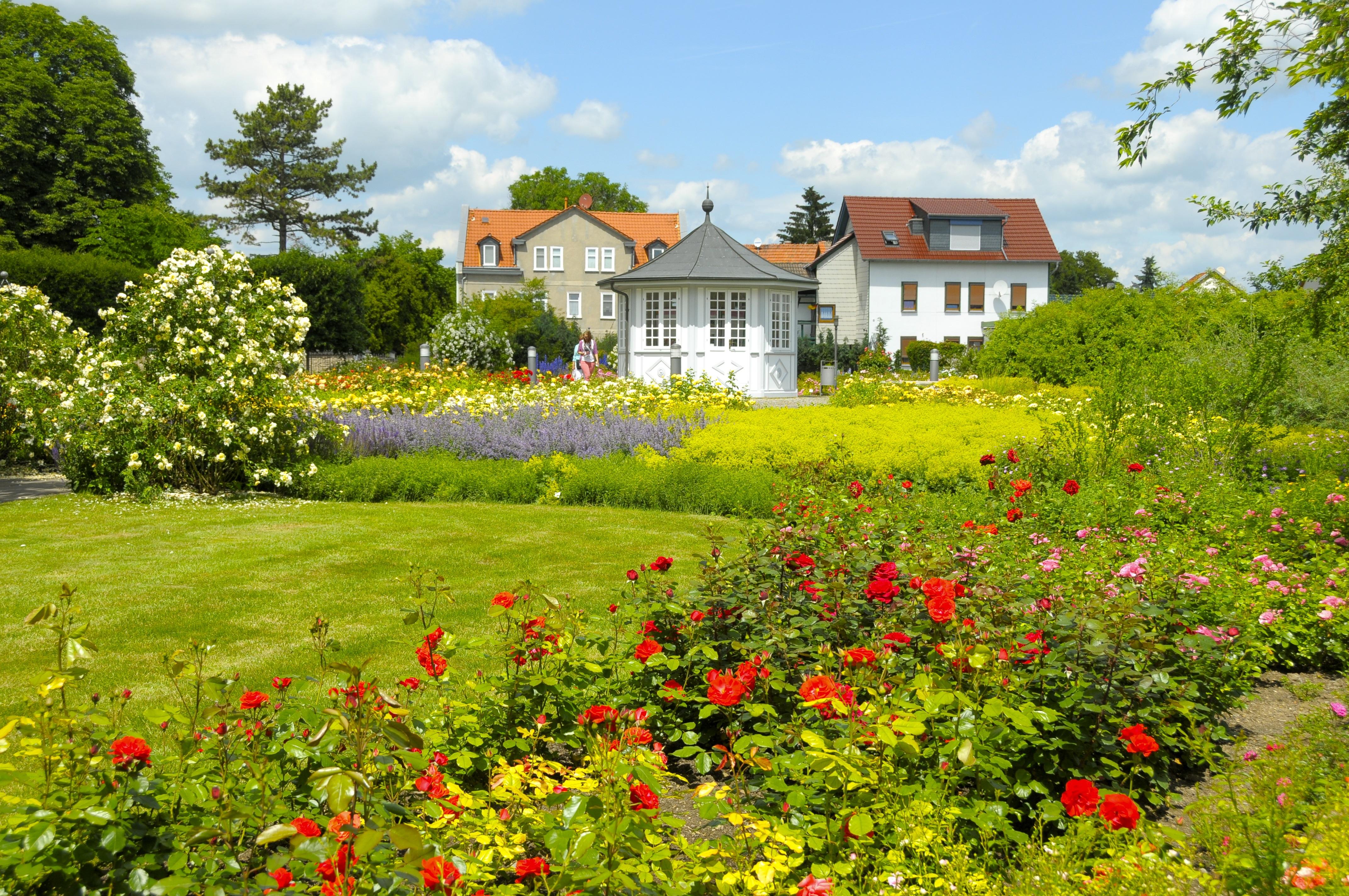 Rosengarten in Bad Langensalza. a.