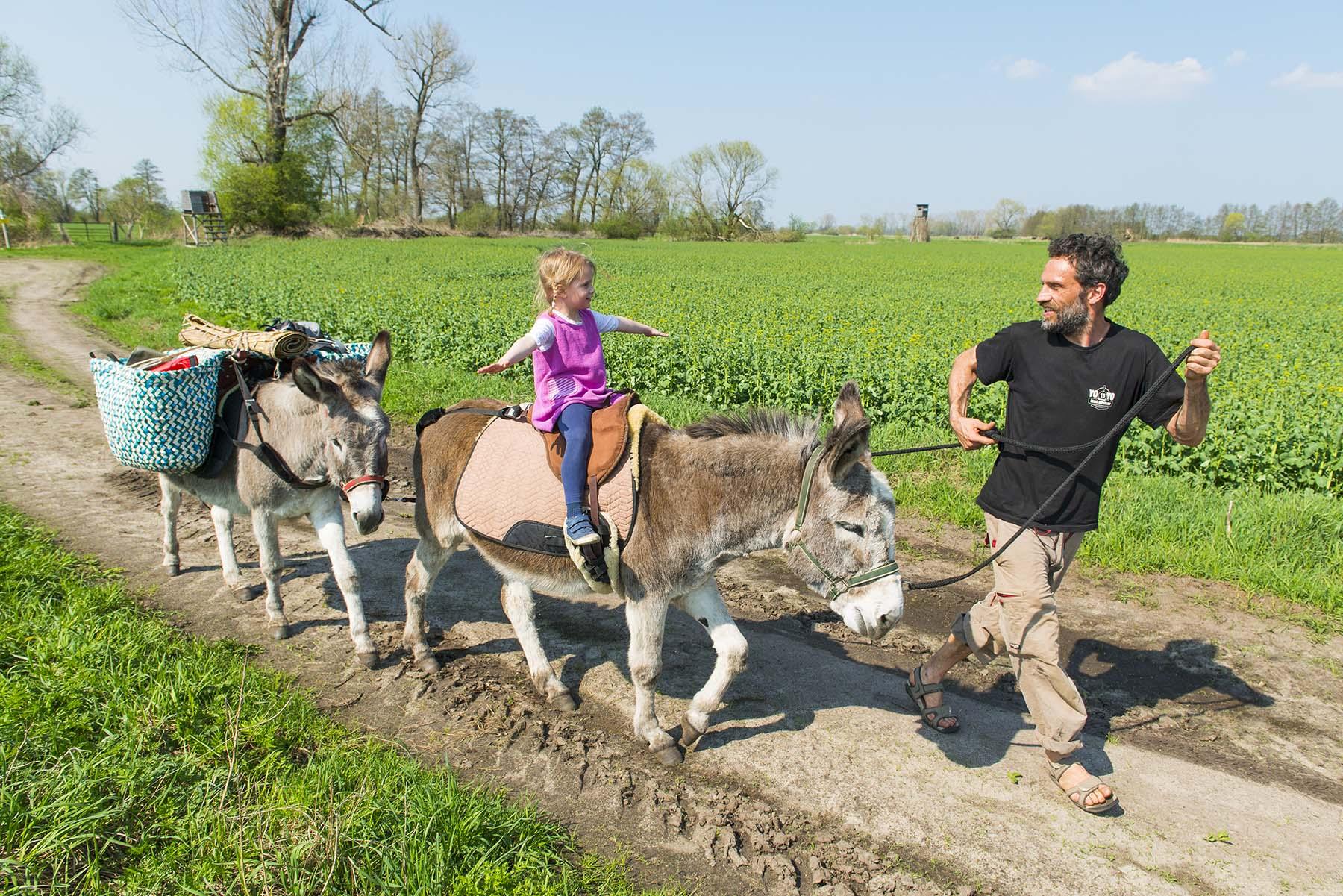 Artikel: Eselwandern im Fläming
