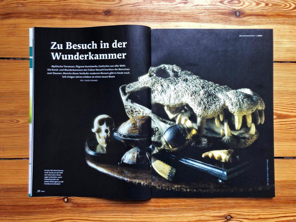 Foto der Aufmacher-Seiten des Artikels über Wunderkammern.