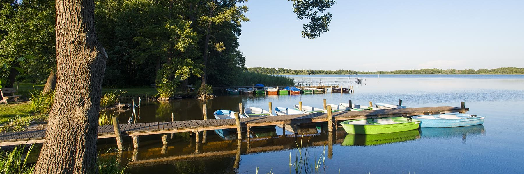 Ruderboote am Bootssteg, Fischerei Köllnitz, Großer Schauener See, Groß Schauen, Naturpark Dahme-Heideseen, Landkreis Oder-Spree, Brandenburg, Deutschland
